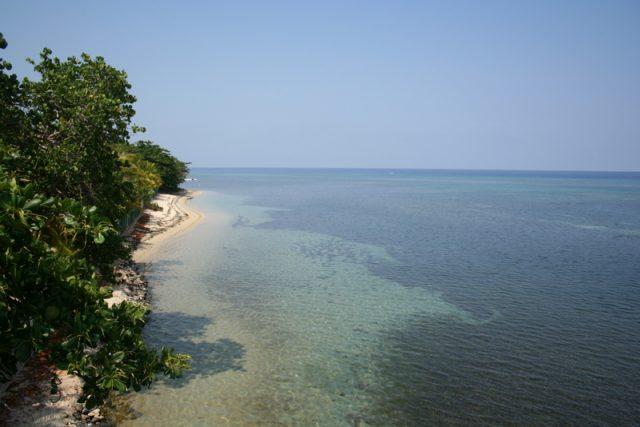 Roatan Adası
