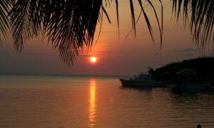 Honduras'ın Cennet Adasında Tüplü Dalış; Roatán