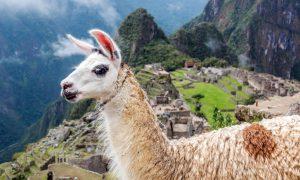 Peru – İnka Mirası Ülke