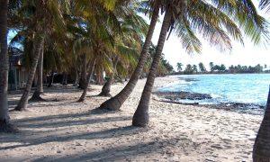 Mercan Kayalıkları Merkezi – Santa Lucia