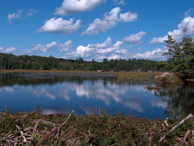 Killarney Eyalet Parkı