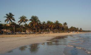 Tatil Adası – Cayo Coco