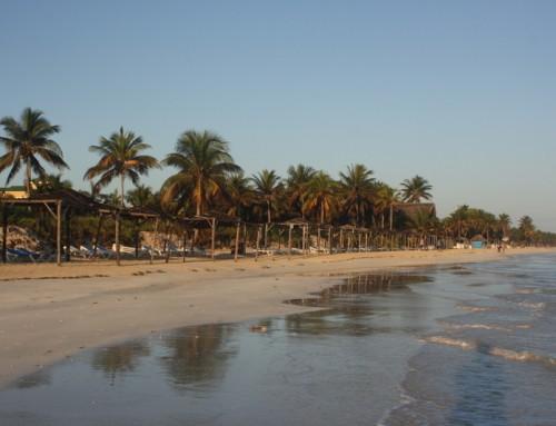 Cayo Coco – Tatil Adası