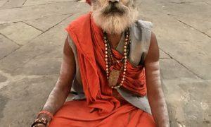 Beş Duyuya Saldırı Yapan Ülke Hindistan