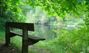 Ontario Eyalet Parkları: Sauble Falls