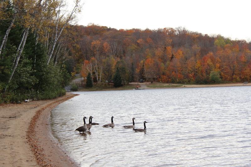 Arrowhead Eyalet Parkı