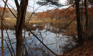 Grindstone Creek – Ontario Parkları