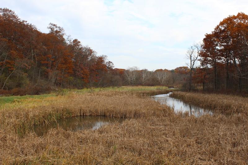 Grindstone Creek Şelalesi
