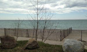 Darlington Park – Ontario Eyalet Parkları