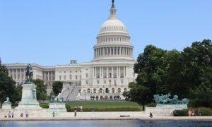 Müze Cenneti Bir Başkent: Washington, DC