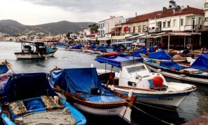 Akdeniz Foklarının Evi Foça