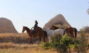 Kapadokya'da atlara fısıldayan adam