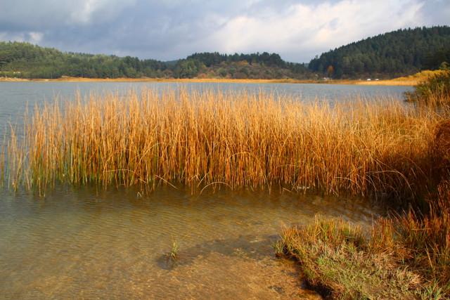 Abant Gölü | Küçük Dünya Gezi Rehberi