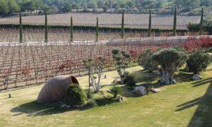 İzmir'in şirin ilçesi Urla ve Bağ Yolu'nda şarap tadımı
