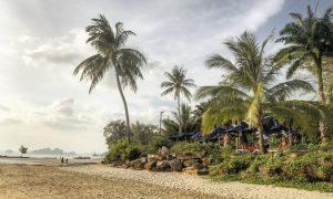 Tayland'da gözde bir balayı destinasyonu – Krabi