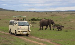 Kenya'da Masailer'in İçinde Bir Beyaz Kadın – Masai Mara (Maasai Mara) gezi rehberi