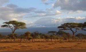 Kenya ve Masailer – Amboseli gezi rehberi