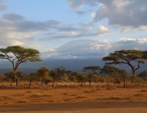 Amboseli – Kilimanjaro'nun Etekleri
