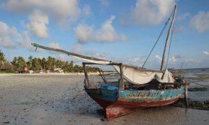 Tanzanya'nın Baharat Adası – Zanzibar