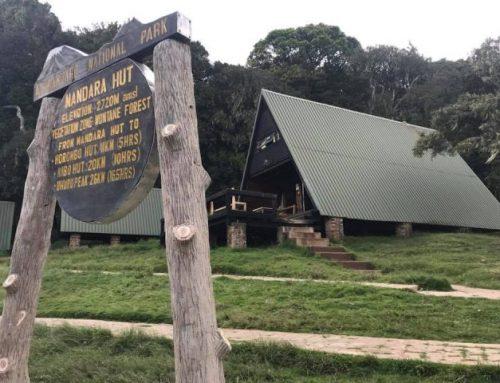 Kilimanjaro – Başı Dumanlı Dağ