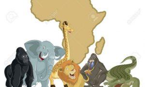 Namibya Vizesi Nasıl Alınır
