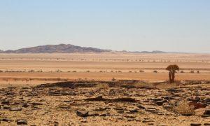 Okyanustan Çöllere; Namibya