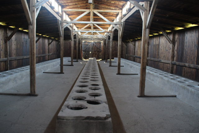 Birkenau toplama ve yok etme kampı
