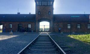Auschwitz & Birkenau toplama & yok etme kampları
