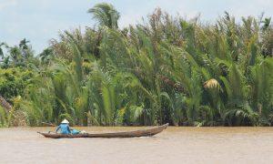 Ho Chi Minh City (Saigon) civarında gezilecek görülecek yerler