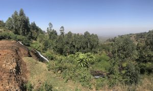 Sipi Falls (Sipi Şelaleleri)