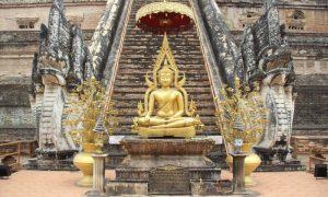 Kuzeyin Gülü Chiang Mai