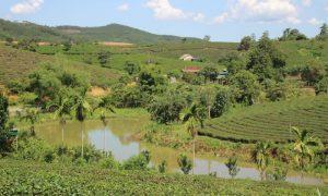 Kuzey-Orta Vietnam – Nghệ An (Nghe An)