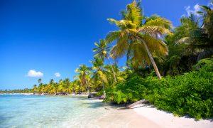 Dominik Cumhuriyeti – Survivor Adası